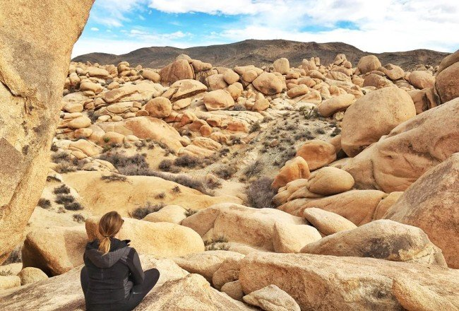 Look Simba, everything the light touches is ours. #JoshuaTree