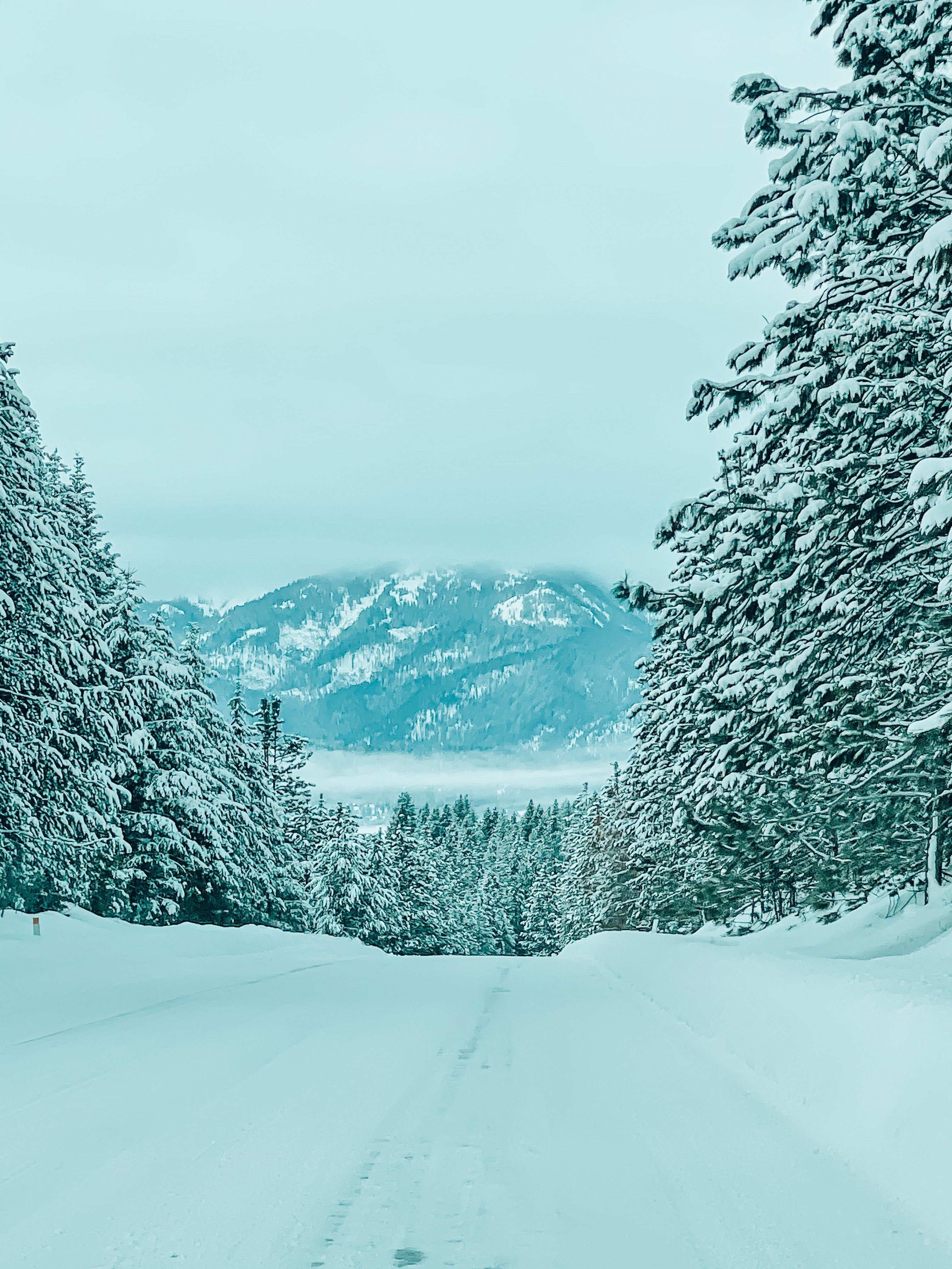 WarmLake Warm Lake Cascade Idaho