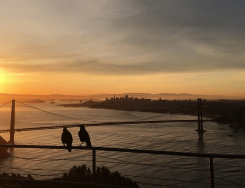 The Best Sunrise Hike Above the Golden Gate Bridge